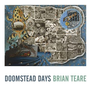 Doomstead Days by Brian Teare (Nighboat Books)