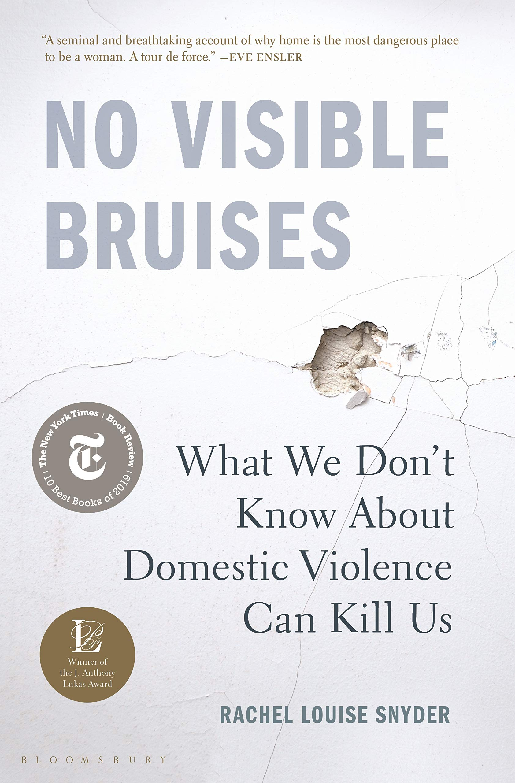 No Visible Bruises: What We Don't Know About Domestic Violence Can Kill Us by Rachel Louise Snyder (Bloomsbury)